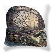 Vesalius: Cranium Throw Pillow