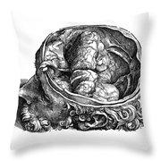 Vesalius: Olfactory Organs Throw Pillow