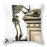 Vesalius: Skeleton, 1543 Throw Pillow
