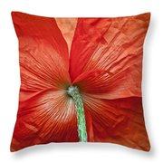 Veterans Day Remembrance Throw Pillow