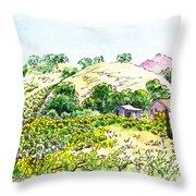 Viano Winery Martinez California Throw Pillow