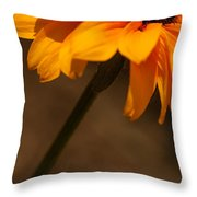 Vibrant Black Eye Throw Pillow