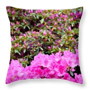 Vibrant Colors Throw Pillow