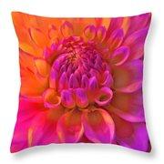 Vibrant Dahlia Flower Throw Pillow
