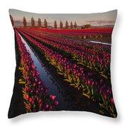 Vibrant Dusk Tulips Throw Pillow