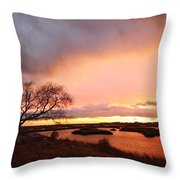 Storm At Dusk 2am-108350 Throw Pillow