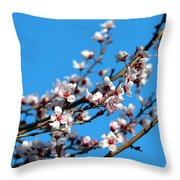 Vibrant Spring Throw Pillow