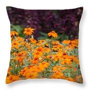 Vibrant Zinnias Throw Pillow