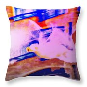If I Was A Seagull, I Would Be Vibrating My Wings And Try To Fly  Throw Pillow