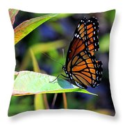 Viceroy 1 Throw Pillow