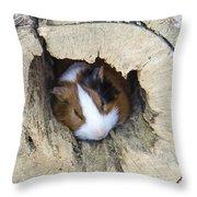 Vicious Animal Sleeping Throw Pillow