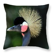 Victoria Crowned Crane Throw Pillow