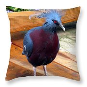 Victoria Crowned Pigeon Strutting Around Throw Pillow