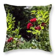 Victoria Park-5 Throw Pillow