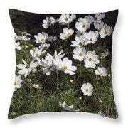 Victoria Park-6 Throw Pillow