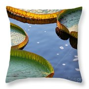 Victoria Waterlilies Throw Pillow