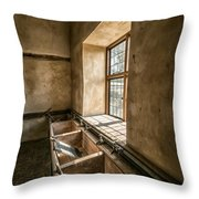 Victorian Laundry Room Throw Pillow