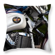 Victory 100 Cubic Inches Throw Pillow