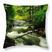 Viento Creek In June Throw Pillow