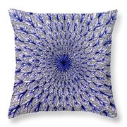 Vietri Sul Mare Pottery Throw Pillow