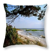 View At East Point  Throw Pillow