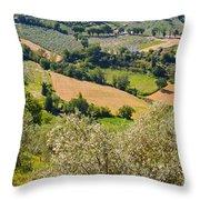 View At Montefalco Throw Pillow