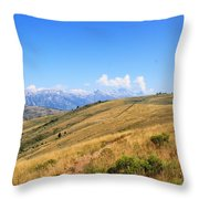 View From A Horse Throw Pillow