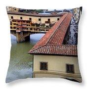 View From A Window  Throw Pillow