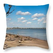 View From Big Talbot Island Beach Throw Pillow