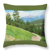 View From Deer Mountain Throw Pillow