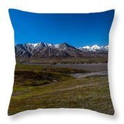 View From Eielson Throw Pillow