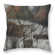 View From Foggy Window Throw Pillow