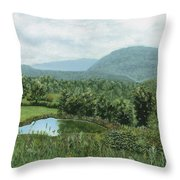 View From Kent St. Throw Pillow