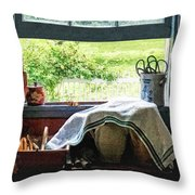 View From Kitchen Window Throw Pillow