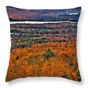 View From Mccauley Mountain Throw Pillow