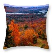 View From Mccauley Mountain II Throw Pillow