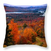 View From Mccauley Mountain II Throw Pillow by David Patterson