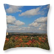 View From Mt Auburn Cemetery Tower Throw Pillow