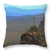 View From Parker Creek Canyon Throw Pillow
