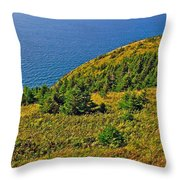 View From Skyline Trail In Cape Breton Highlands Np-ns Throw Pillow