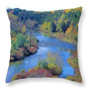 View From The Dam Throw Pillow by Peter Jackson