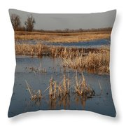 View From The Duck Blind Throw Pillow