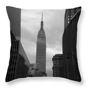 View From The Garden Throw Pillow