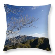 View From The Great Wall 842 Throw Pillow