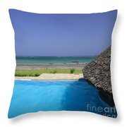 View From The Pool Throw Pillow