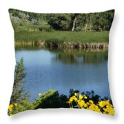 View From The Trail Throw Pillow