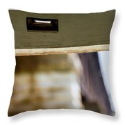 View From The Train Throw Pillow