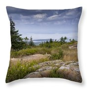View From Top Of Cadilac Mountain In Acadia National Park Throw Pillow