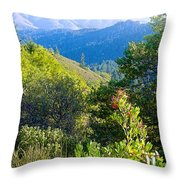 View From Trail To West Point Inn On Mount Tamalpais-california  Throw Pillow