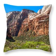 View From Weeping Rock Throw Pillow
